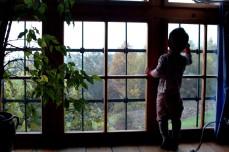 D at window, cottage, Austria