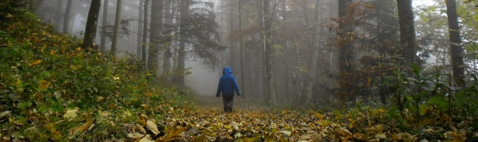 D hiking through misty forest