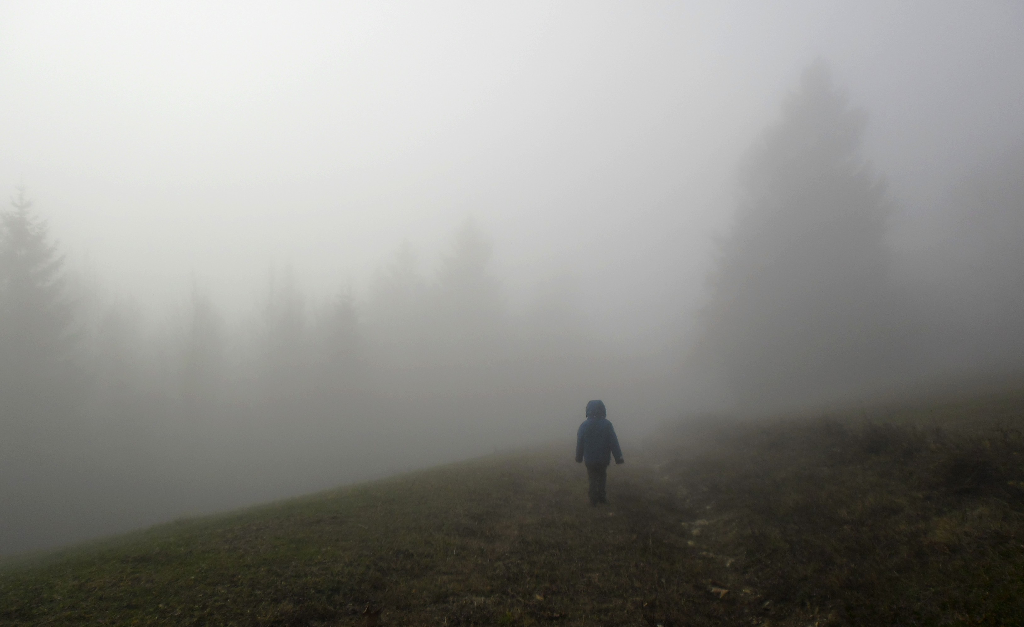 D walking into the mist | Field Notes From Fatherhood