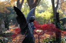 angel, kerepesi