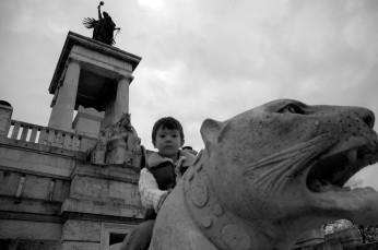 D riding lion, Kossuth monument