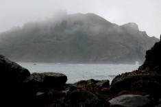 foggy Trinidad