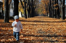 G strolling down leafy lane