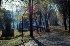 kerepesi shadows and tombs