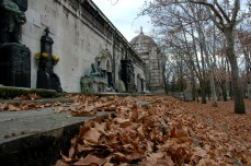 tombs and leaves