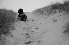 Griffin climbing sand dune, Renvyle