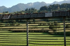 hay-drying rack and mountains, Stara Fuzina