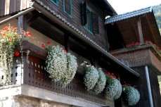 window boxes at Rupa