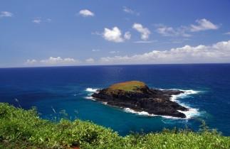 island off Kilauea point