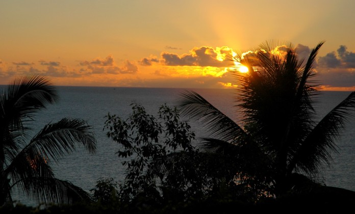 sunset with palms, Princeville
