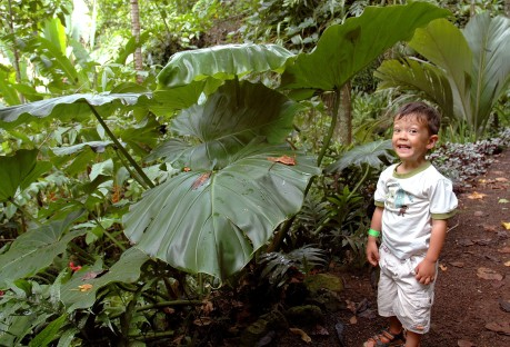 cheesy smile and big leaves