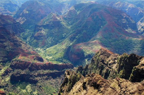 Waimea canyon on the way up 2