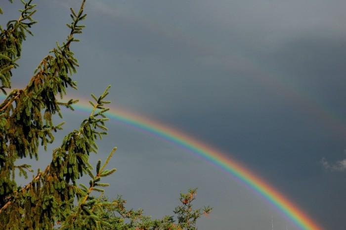 rainbow from flat