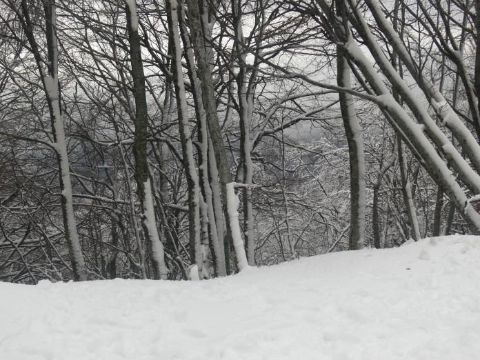 Christmastime snow