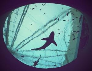 Southeast Asia Aquarium