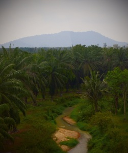 View from the train near Layang-Layang, Malaysia