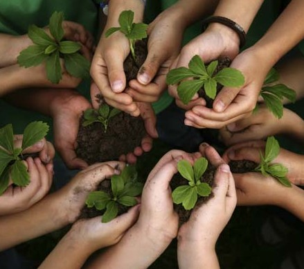 Diggin the dirt with your kids a child s garden field for Gardening with children