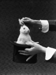 magician-hands-pulling-rabbit-out-of-top-hat