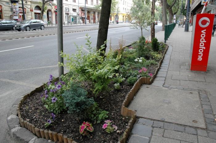 guerilla garden on bartok bela 3