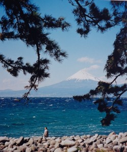 Dwarfed by Suruga Bay and Mt. Fuji