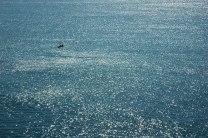 Kayakers on the Mediterranean