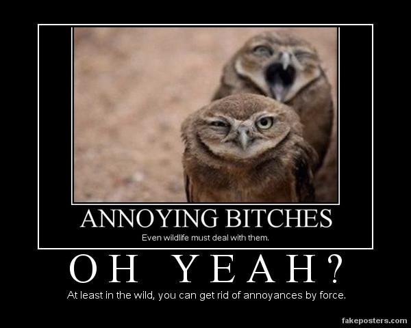 owls_annoying_bitches_by_seekerarmada-d5mzviy