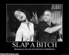 slap_bitch_demotivational_poster-s440x352-82424