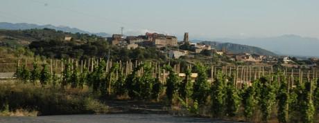 gratallops panorama