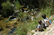 boys on river bank