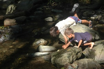 boys playing in stream2