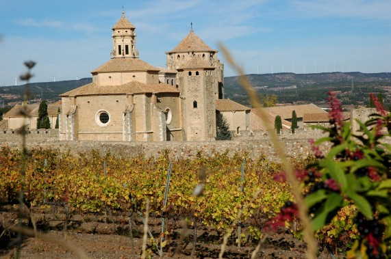 Poblet monastery with autumn vineyards