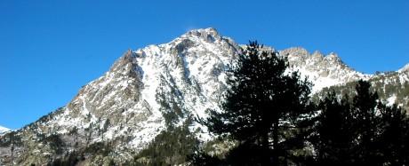 mountains on botanical trail