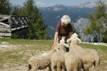 mom with sheep