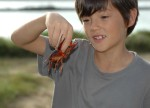 d-with-crayfish2